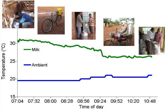 Figure 2.2. Ambient temperature and milk temperature during transport from the farm to the cooperative.