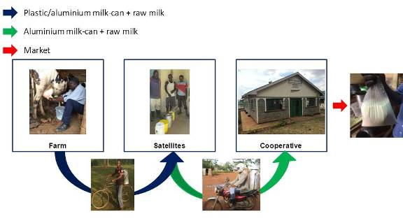 Figure 1. Handling of milk from the farm to the market.