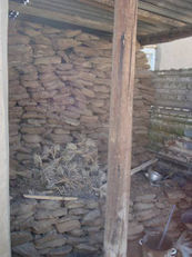 File:Storage of dung-cakes for heating and cooking in Murgab, Tajikistan.jpg