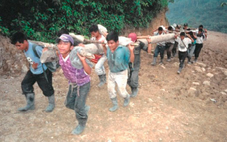 File:Gua 25- Local Workers Carrying Construction Materials for the Micro-Hydroelectric Plant in Chel.PNG
