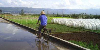 Agricultural worker on the way to work.jpg