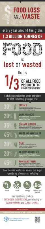 File:Food Loss and Waste Facts.pdf