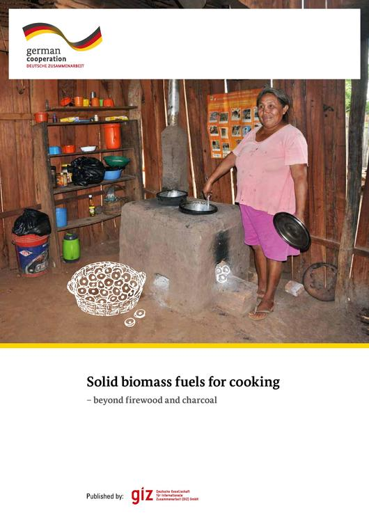 File:Solid biomass fuels for cooking - beyond firewood and charcoal. GIZ 2017.pdf