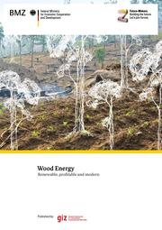 Wood Energy renewable, profitable, and modern