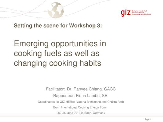 File:Emerging opportunities in cooking fuels as well as changing cooking habits - Christa Roth Bonn 2013.pdf