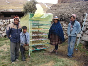 Bolivia Solar drying