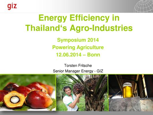 File:Energy Efficiency in Thailand's Agro-Industries.pdf