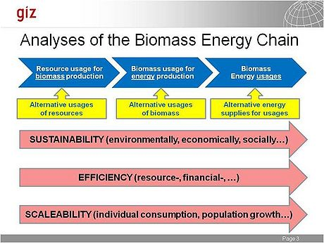 GIZ Analysis of the biomass energy chain.jpg