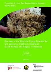 Overview of the Waste-to-Energy Potential for Grid-connected Electricity Generation (Solid Biomass and Biogas) in Indonesia