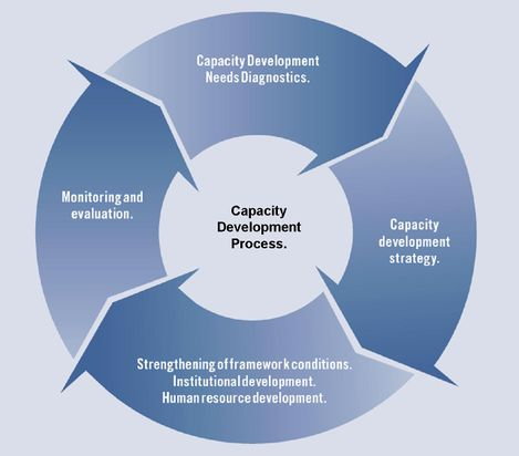Capacity Development Process CaDRE.jpg