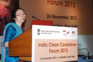 India Clean Cookstove Forum 2013 2.JPG