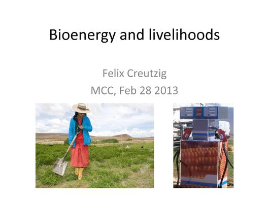 File:Bioenergy and livelihoods.pdf