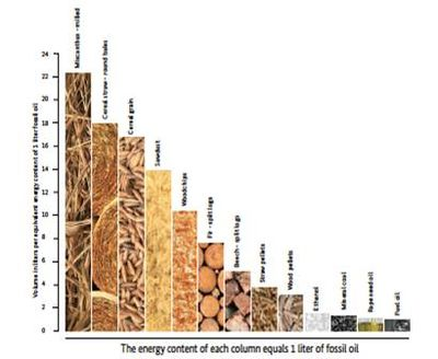 Biomass Briquettes – Production and Marketing - energypedia info
