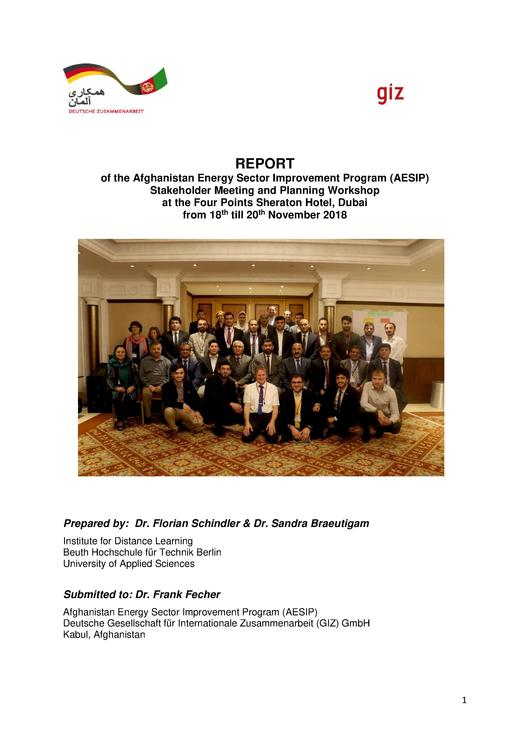 File:GIZ ESIP Planning Workshop Report.pdf