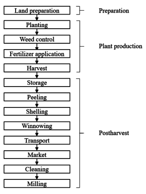 Maize value chain.png