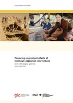 Measuring Employment Effects of Technical Cooperation Interventions - Some Methodological Guidelines.pdf