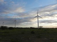 wind park in Rio Grande do Norte-state (Brazil)