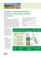 Potential of Sustainable Biomass Production in Developing Countries.pdf