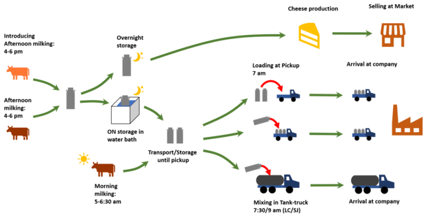 Scheme of the Colombian dairy value chain from milking to the transformation industry