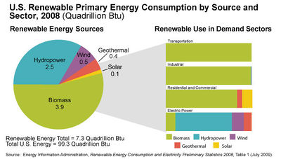 Renewable Primary Energy consumption by source and sector.jpg