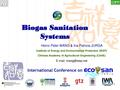 Biogas Sanitation Systems.pdf