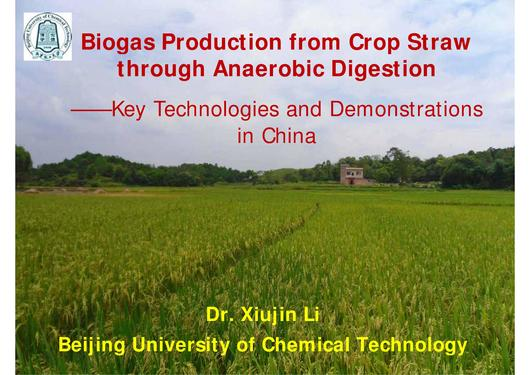 File:Biogas Production from Crop Straw through Anaerobic Digestion.pdf