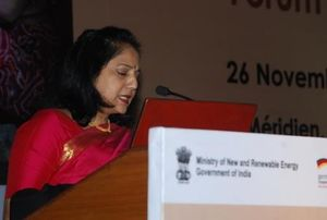 India Clean Cookstove Forum 2013 12.JPG