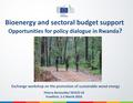 Bioenergy and Sectoral Budget Support - Opportunities for Policy Dialogue in Rwanda.pdf