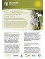 Costs and Benefits of Clean Energy Technologies in Kenya's Vegetable Value Chain.pdf