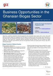 Business Opportunities in the Ghanaian Biogas Sector