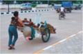 Non-motorised goods transport to the market in Vientiane, Laos..png