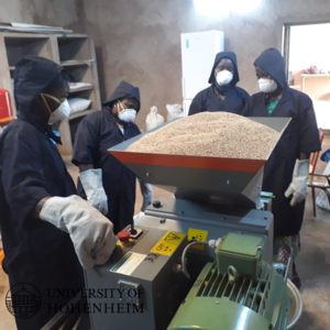 Fig. 8 Production of sesame oil by a cooperative in Nouna.png