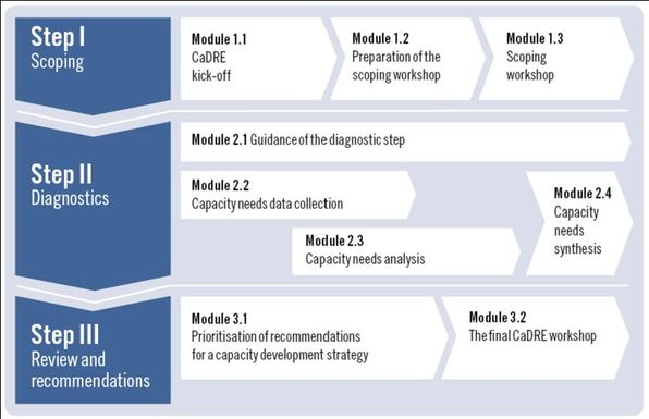 Overview of CaDRE steps and modules.jpg