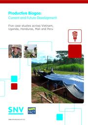 EN Productive Biogas Current and Future Development 2014.pdf