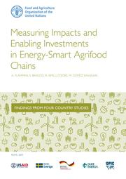 Costs Measuring Impacts and Enabling Investments in Energy-Smart Agrifood Chains