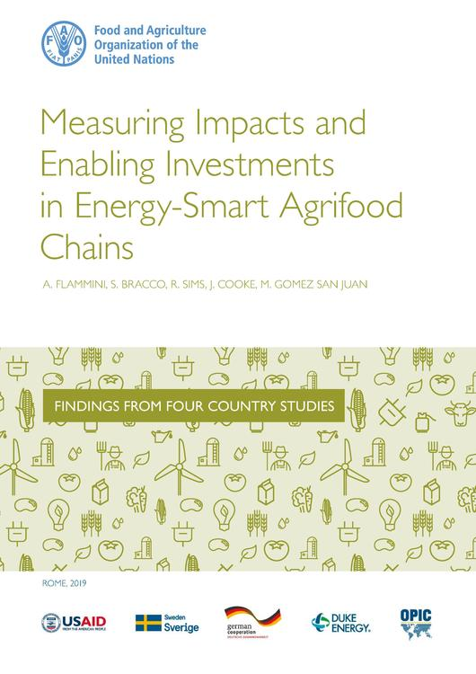 File:Measuring Impacts and Enabling Investments.pdf