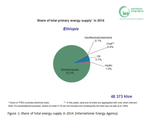 Figure 1 Share of total energy supply in 2014.PNG