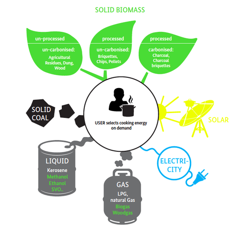 Biomass Fuel Examples
